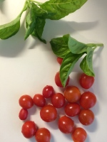 A basic sauce:  fresh tomatoes and basil.